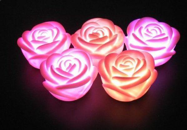 Bild von LED Rose