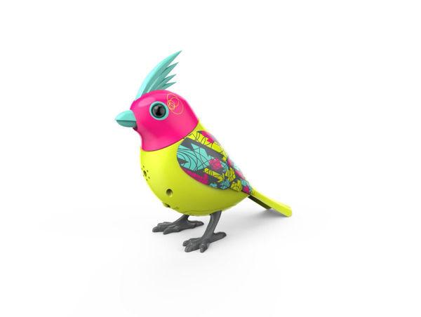Bild von Digi Birds der 3. Generation
